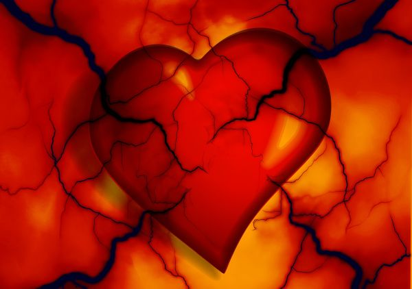 Onemocnění srdce