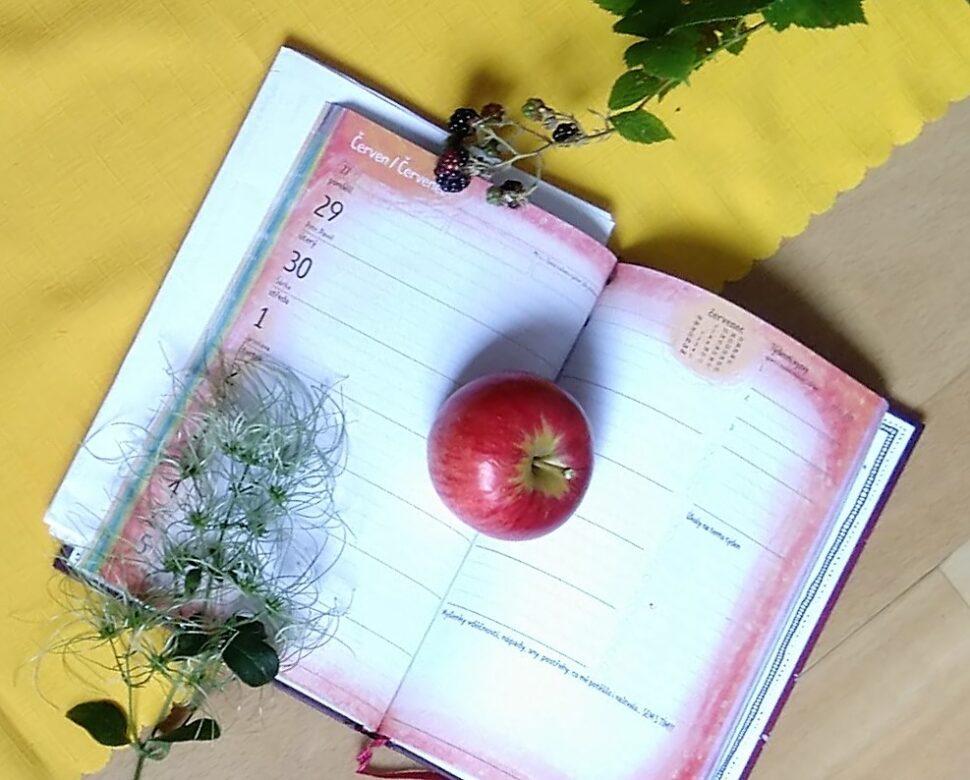 Kalendar, termin